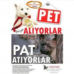 Pet diye Alıyorlar Pat diye Atıyorlar
