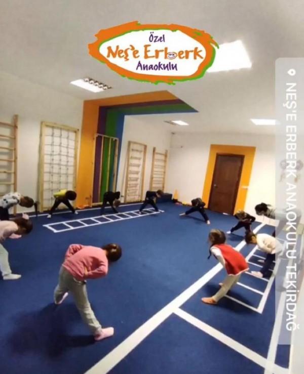 Neden Hareket ve Koordinasyon Eğitimi?